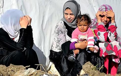 الأمم المتحدة تدعو إلى بذل الجهود لحماية السوريات من العنف