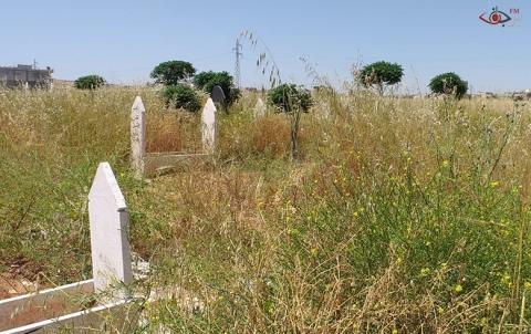 معاناة الأهالي من زيارة القبور التي غطتها الأعشاب البرية بكثافة