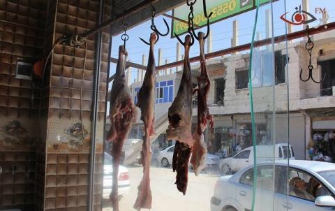 افتتاح مسلخ لأضاحي العيد في كوباني
